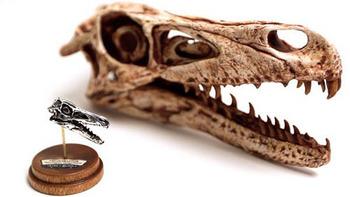 500px_Velociraptor_With_Skull.jpg